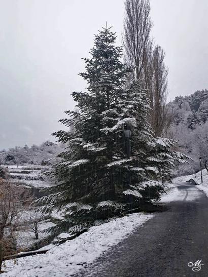 19 12 13 neige 1