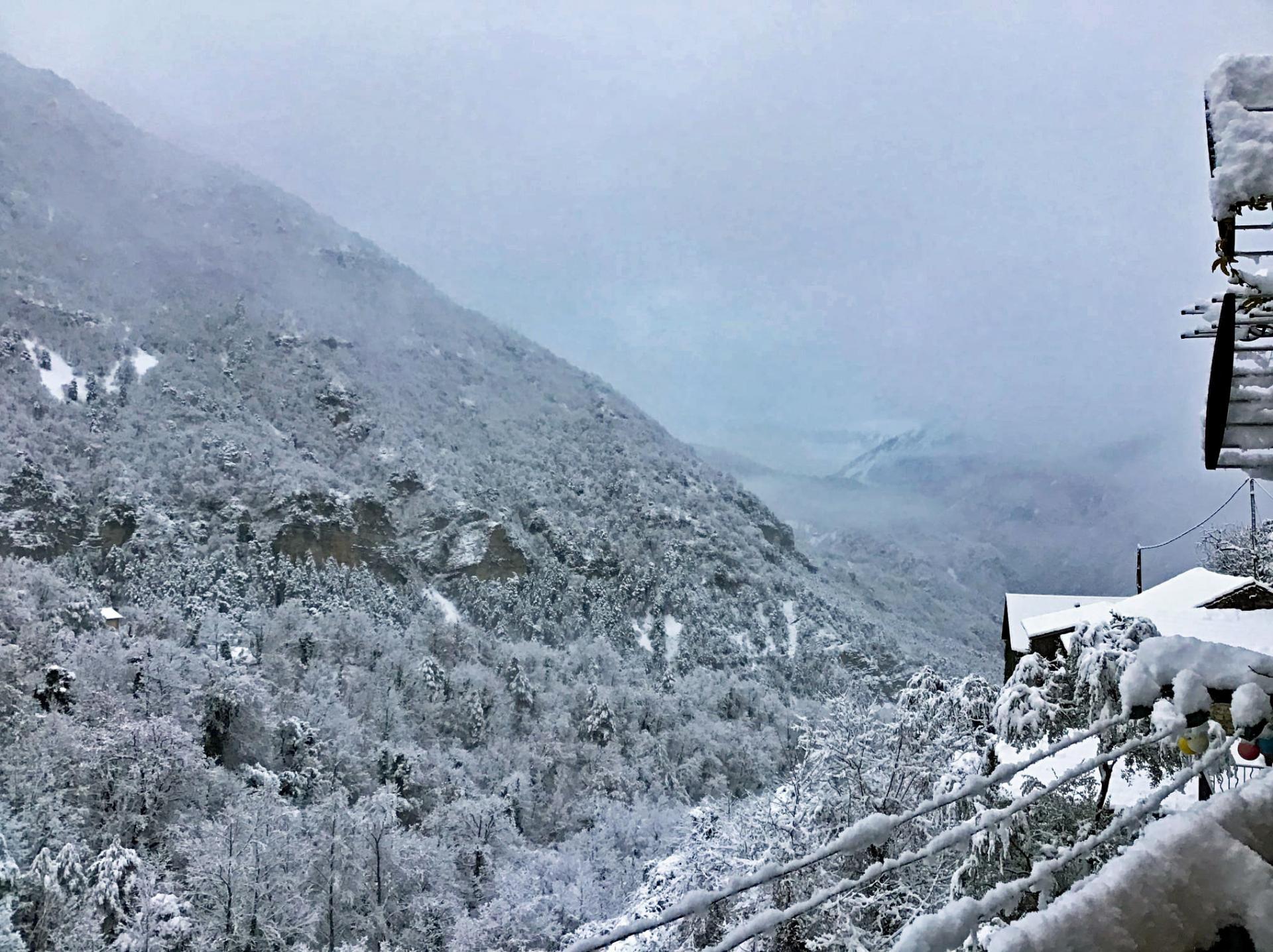 20 12 28 marie neige s